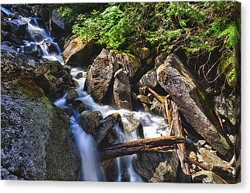 Upper Cascades Of Malchite Creek Canvas Print by A A