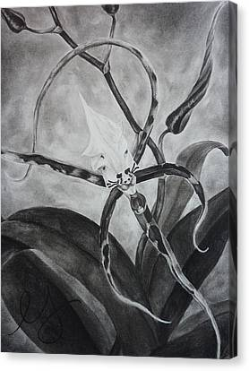 Upside-down Orchid Canvas Print by Estephy Sabin Figueroa