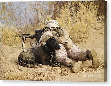 U.s. Marine And A Military Working Dog Canvas Print by Stocktrek Images