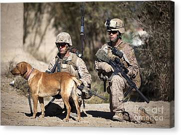 U.s. Marines And A Military Working Dog Canvas Print by Stocktrek Images