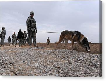 Us Soldier And His Working Dog Search Canvas Print by Everett