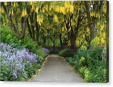 Van Dusen Gardens Canvas Print by Pierre Leclerc Photography