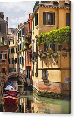 Venetian Gold Canvas Print by Sharon Foster