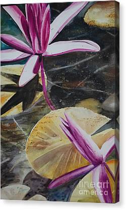 Vietnam Temple Waterlilies Canvas Print by Alla Dickson