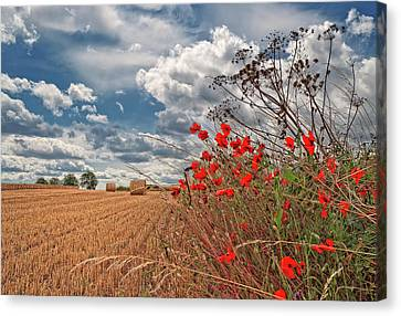 View Of Summer Landscape Canvas Print by All images taken by Steve Cole