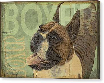 Vintage Boxer Dog Canvas Print by Wendy Presseisen