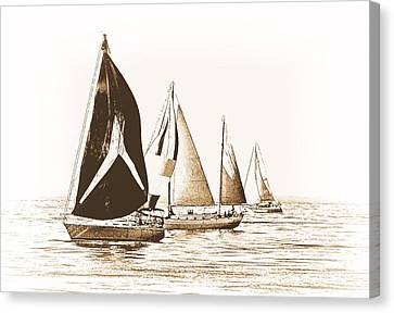 Vintage Regatta Canvas Print by Maria Dryfhout