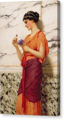 Violets Canvas Print by John William Godward