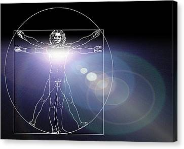 Vitruvian Man With Flare In Chest Canvas Print by Laguna Design