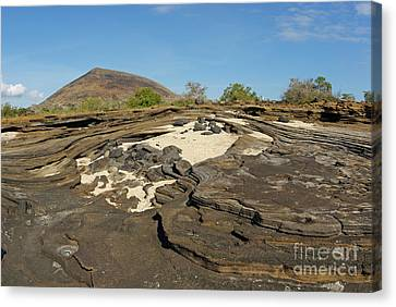Volcanic Landscape At Punta Vincente Roca Canvas Print by Sami Sarkis