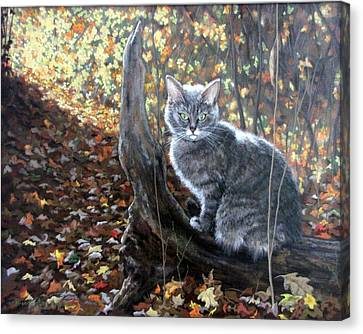 Waiting In The Woods Canvas Print by Sandra Chase