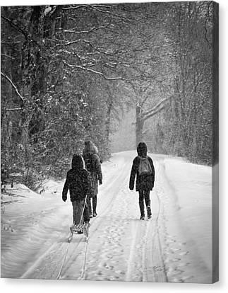 Walk In The Snow Canvas Print by Michael Avory
