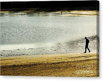 Walking On The Beach Canvas Print by Carol F Austin