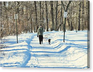 Walking The Dog Canvas Print by Paul Ward