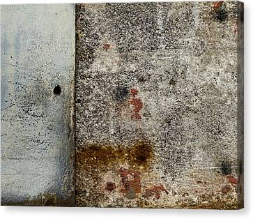 Wall Texture Number 10 Canvas Print by Carol Leigh