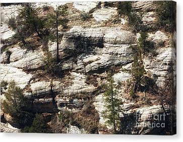 Walnut Canyon Canvas Print by John Rizzuto