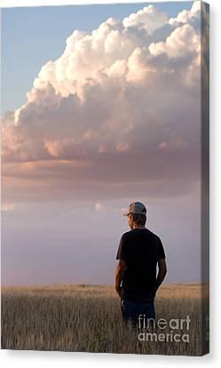 Watching The Grain Grow Canvas Print by Cindy Singleton