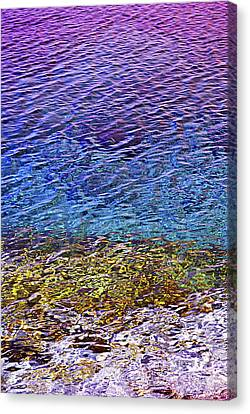 Water Surface  Canvas Print by Elena Elisseeva