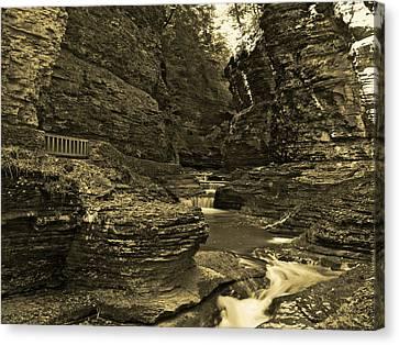 Watkins Glen In Orotone Canvas Print by Joshua House