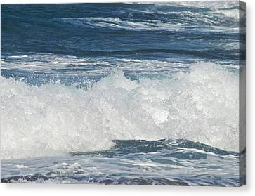 Waves Breaking 7964 Canvas Print by Michael Peychich