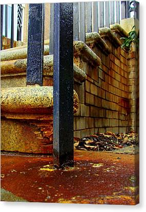 Weathering Heights  Canvas Print by Tammy Cantrell
