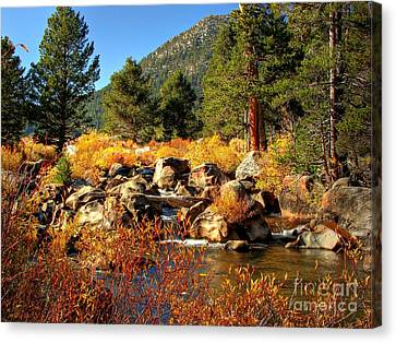 West Fork Of The Carson River Fall Colors Canvas Print by Scott McGuire