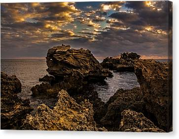 Westcoast Wonders Canvas Print by Dave Kelly