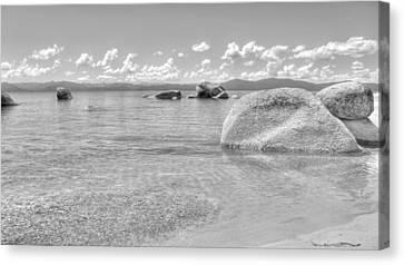 Whale Beach Black And White Canvas Print by Brad Scott