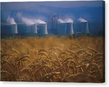 Wheat Fields And Coal Burning Power Canvas Print by David Nunuk