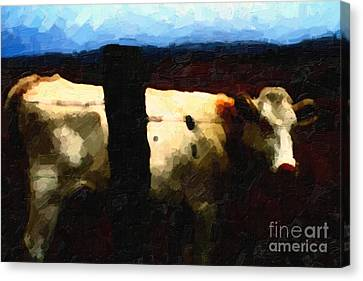 White Cow Behind Fence At Night Canvas Print by Wingsdomain Art and Photography