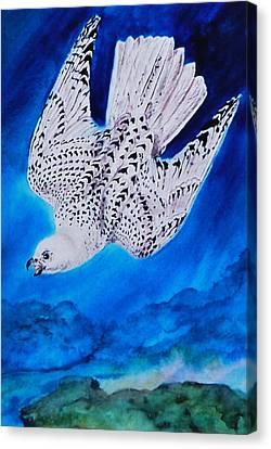 White Falcon Mascot Canvas Print by Phyllis Barrett