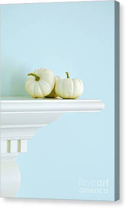 White Pumpkins Canvas Print by HD Connelly