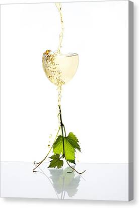 White Wine Canvas Print by Floriana Barbu