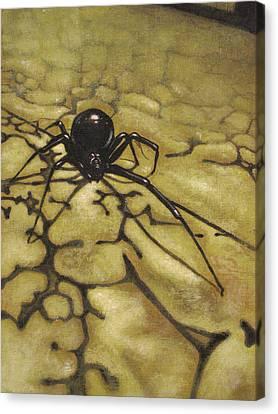 Widow Canvas Print by Adam Strong