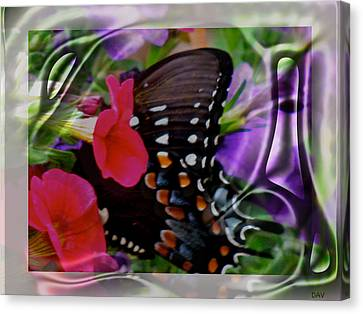 Wild Wings Butterfly Canvas Print by Debra     Vatalaro