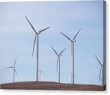 Windmills Canvas Print by Jessica Jandayan
