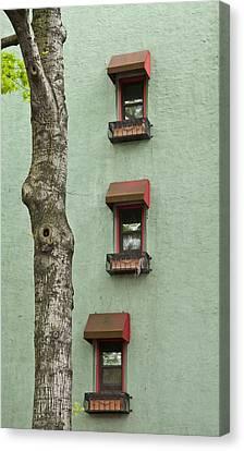 Window Haiku Canvas Print by Art Ferrier