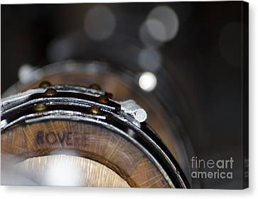 Wine Barrels In Oak Canvas Print by Mats Silvan