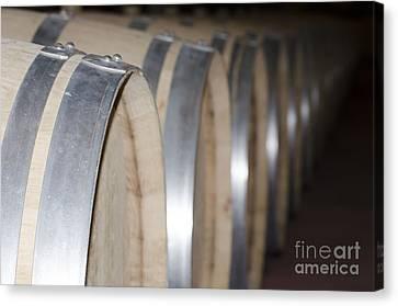 Wine Barrels Canvas Print by Mats Silvan