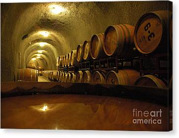 Wine Cellar Canvas Print by Micah May