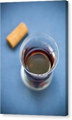 Wine Tasting Canvas Print by Frank Tschakert