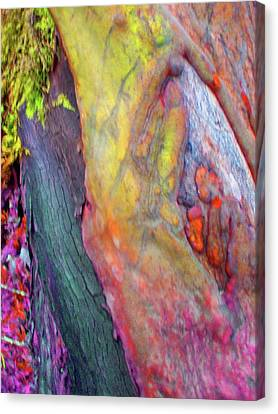 Canvas Print featuring the digital art Winning Ticket by Richard Laeton