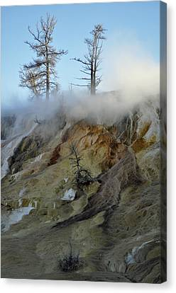 Winter At Yellowstone's Mammoth Terrace Canvas Print by Bruce Gourley