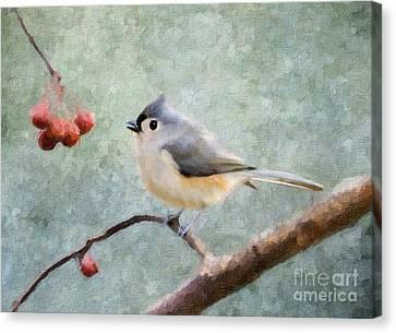 Winter Berries Canvas Print by Betty LaRue