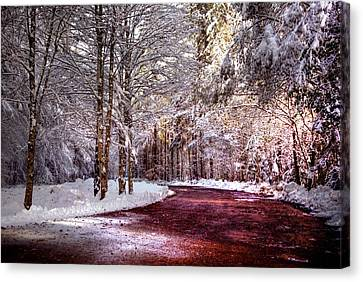 Winter Drive Canvas Print by Anthony Citro