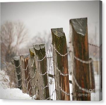 Winter Fence Canvas Print by Sandra Cunningham