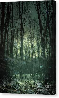 Winter Forest At Twilight Canvas Print by Sandra Cunningham