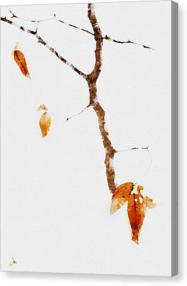 Winter Interludes Canvas Print by Ron Jones