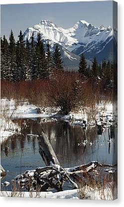 Winter Over Vermilion Lake, Banff Canvas Print by Michael Interisano
