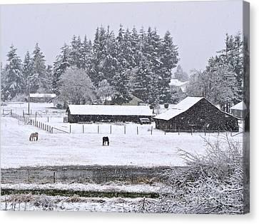 Winter Pasture Canvas Print by Sean Griffin